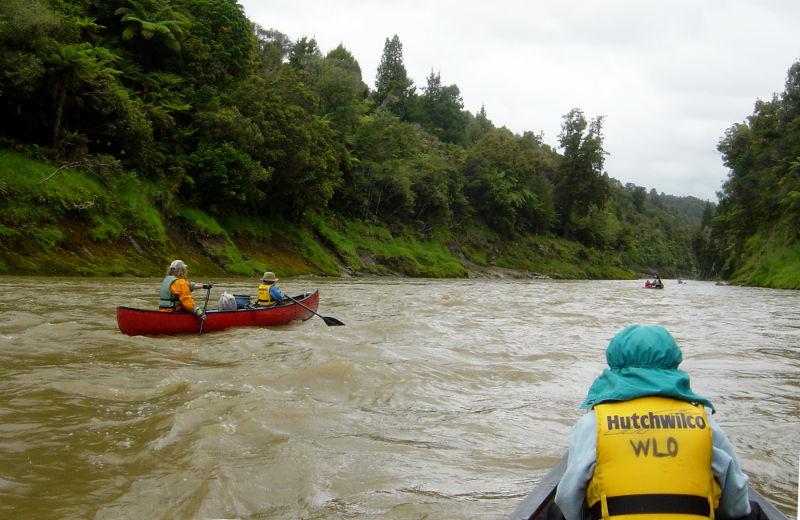Whanganui River - Photo: Andy Waddington