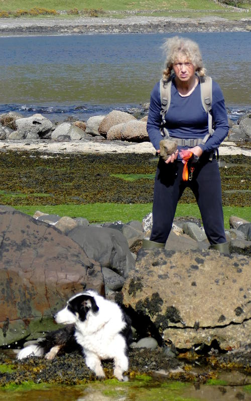 Mary finding fossils while Fern cools off, Carsaig Bay